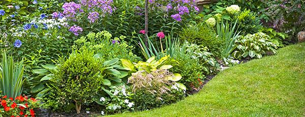 Сам себе ландшафтный дизайнер: планируем сад правильно