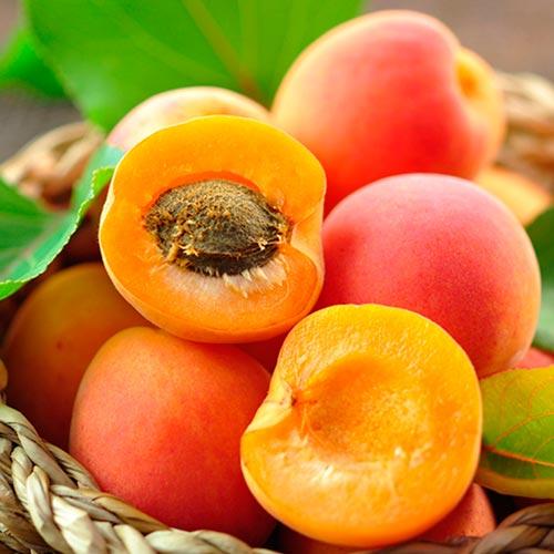 Персик - абрикос изображение 1 артикул 8615
