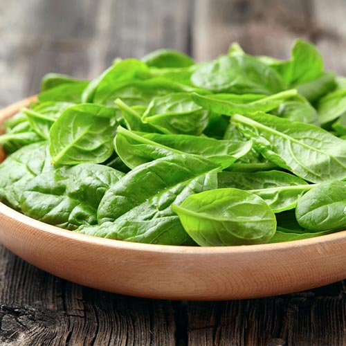 Салат листовой Русский деликатес изображение 1 артикул 74234