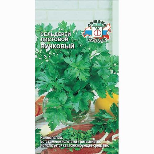 Сельдерей листовой Пучковый изображение 1 артикул 71677