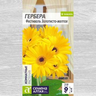 Гербера Фестиваль золотисто-желтая изображение 2