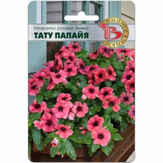 Катарантус розовый Тату Папайя изображение 3