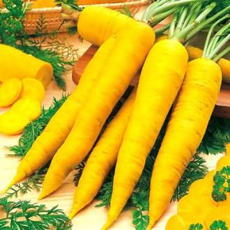Морковь Карамель желтая изображение 7